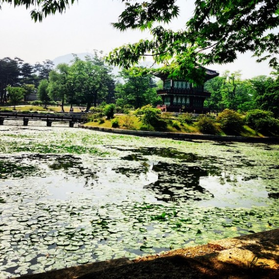 What does your garden look like? -Deoksugung palace gardens.