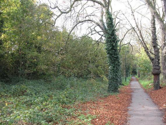04 - Public Park - Barnes Common