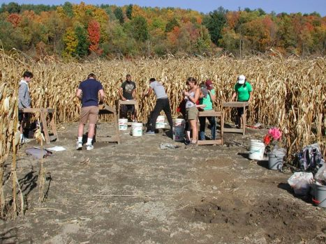 Students in Prof Jordan Kerber's ANTH 253 course work at the Brunk archaeological site, in Lincoln, NY.