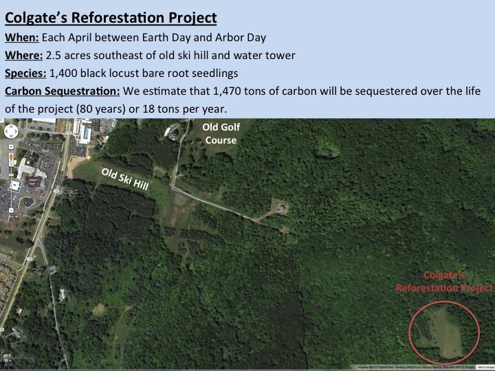 2013 Reforestation - PPT Image