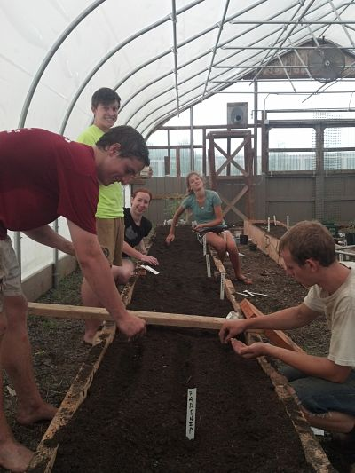 Student Interns Working in the Greenhouse