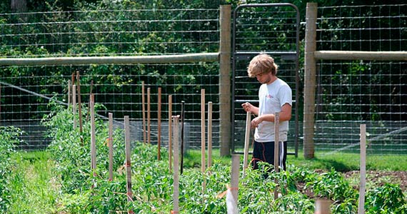 Student in the Community Garden