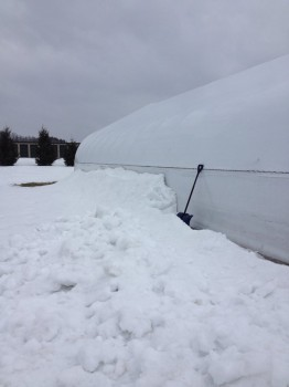 rsz_greenhouse_snow_removal