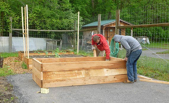 Students building an accessible raised bed at the Colgate Community Garden