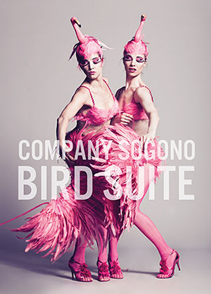 Dancers in flamingo costume